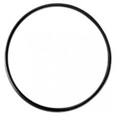 Hayward CCX1000G Body O-Ring for XStream Series Filters