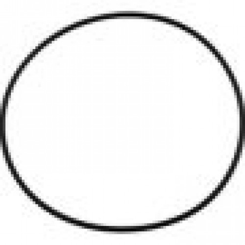 Jandy R0462700 Tank O Ring For Cl Cv Del And Dev Series