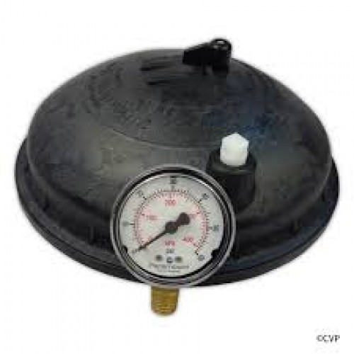 Paramount 005 302 4300 03 Water Valve Top Dome Complete