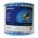 Pentair R173213 original cartridge for Clean & Clear 50 (CC50)